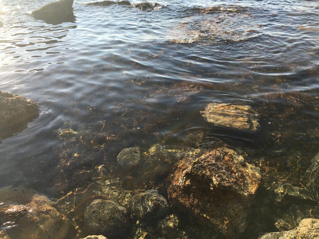積丹岬透明度のある綺麗な海
